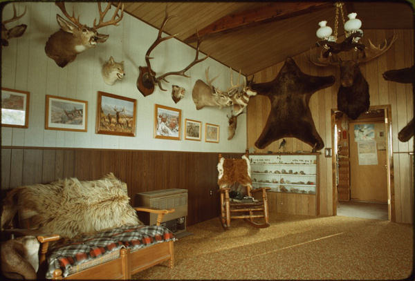 Hunting trophy room, 1979 (Library of Congress)