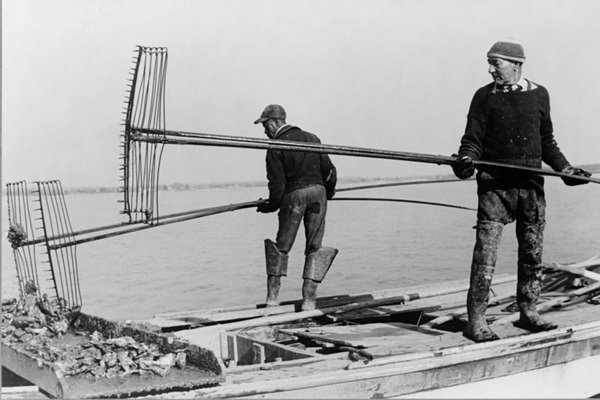 Oystermen with dredge, New Jersey 1938 (Library of Congress)