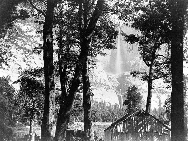 Trees and cabin with Yosemite Falls in background, Yosemite National Park,  ca. 1860 (Library of Congress)